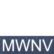 WNV Белый/тёмно-синий