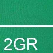 2GR Ярко-зелёный/ярко/зеленый